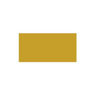 Palme D'or Festival De Cannes
